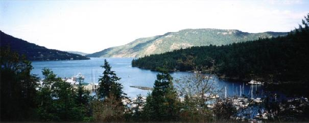 photo of maple bay marina